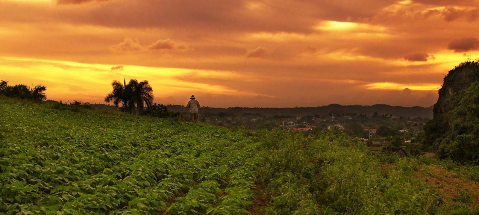 Sunset at Tobacco Farm in Vinales